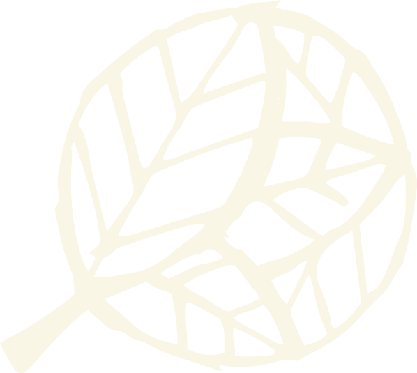 icon light